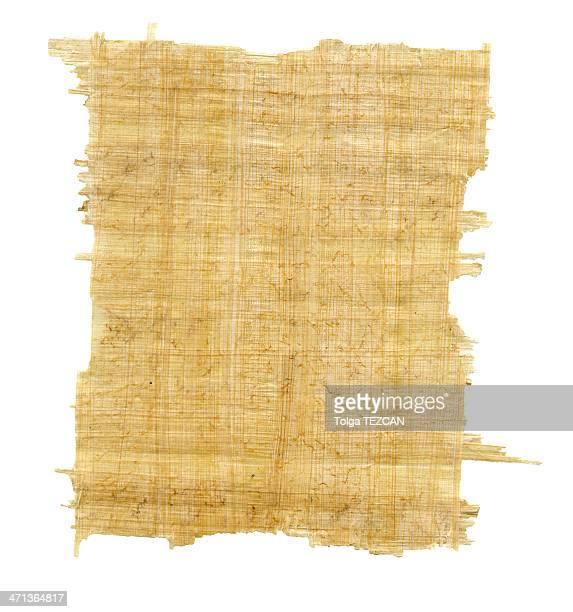 Feuille de Papyrus -XXXL