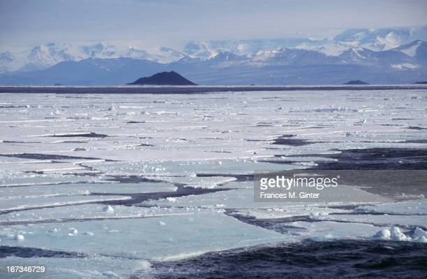Sheets of ice lay on top of the sea en route from McMurdo to Cape Royds Antarctica February 2000