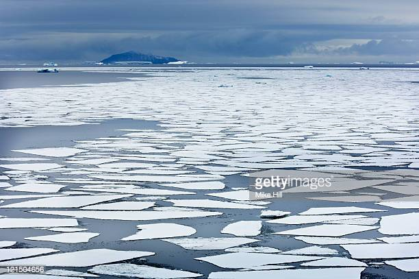 Sheets of Pack Ice, South Shetland Islands,