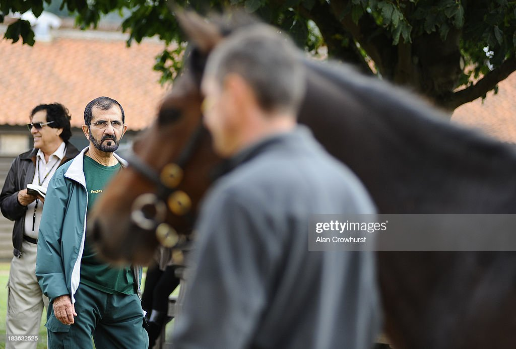 Sheikh Mohammed bin Rashid Al Maktoum looks at lot 52 at Tattersalls yearling sales on October 08, 2013 in Newmarket, England.