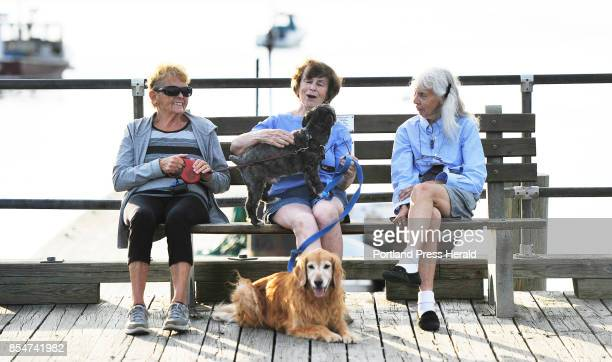 Sheila Hanrahan center of Ferry Beach reacts as Beverly Howe's dog Cooper jumps on her lap as the two along with Midge Sanborn right of Camp Ellis...
