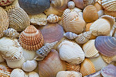 Background from many different shells