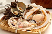 Scollop, turban shell and clam on colander