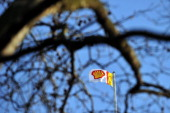 A Shell flag flies from the top of the company's headquarters in London on January 17 2014 Shell issued a severe profits warning on January 17...