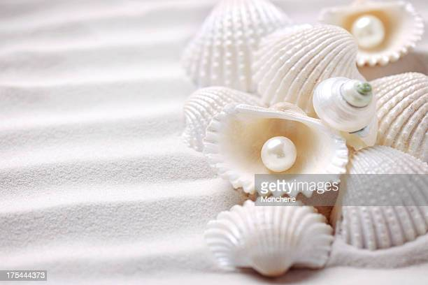 Shells with pearls