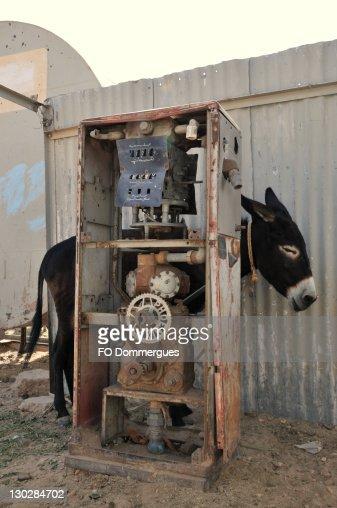 Shendi petrol donkey
