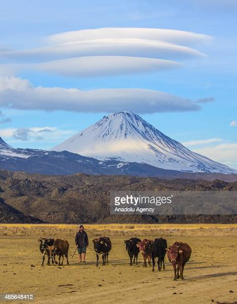 A shepherd and his animals are seen on the foothills of Mount Ararat also known as Agri Mountain in Agri eastern Turkey on March 7 2015 The snow mass...