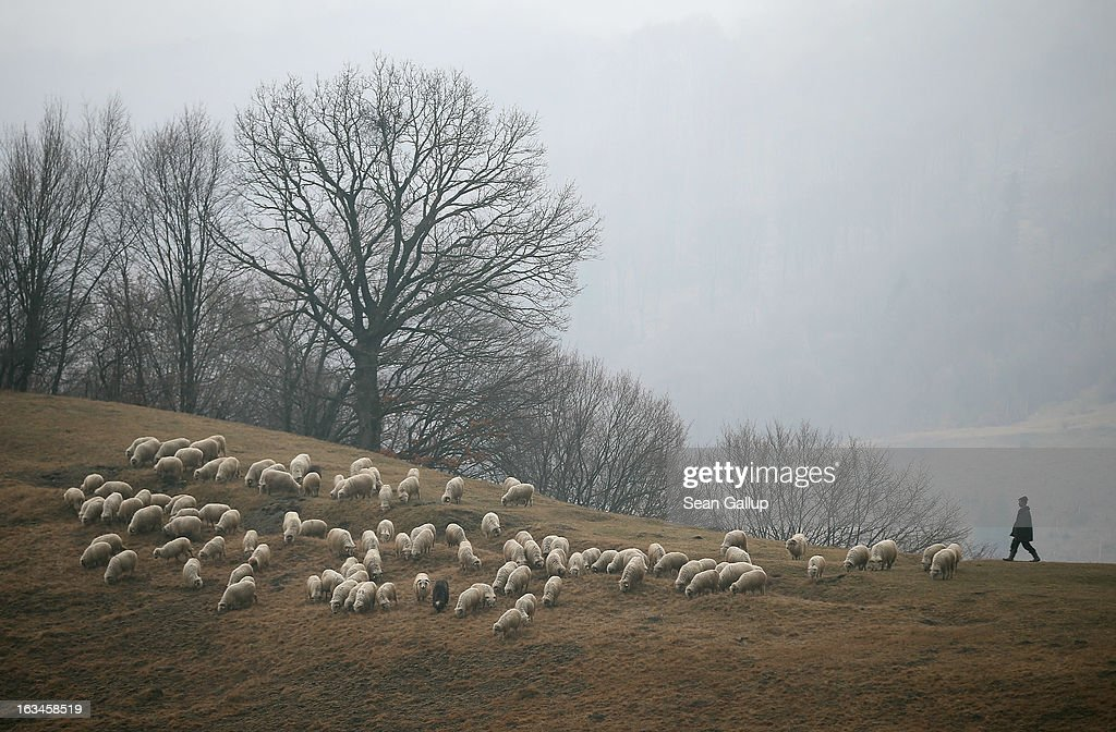 A shepherd keeps watch over his sheep in the Transylvanian Alps on March 10, 2013 near Voinesti, Romania. Both Romania and Bulgaria have been members of the European Union since 2007 and restrictions on their citizens' right to work within the EU are scheduled to end by the end of this year. However Germany's interior minister announced recently that he would veto the two countries' entry into the Schengen Agreement, which would not affect labour rights but would prevent passport-free travel.