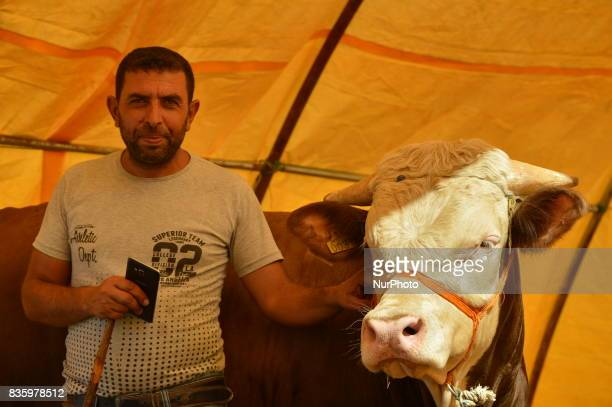A shepherd poses with his sacrificial cow at a livestock market in the Yakacik area of Ankara Turkey on August 20 2017 Shepherds have brought their...
