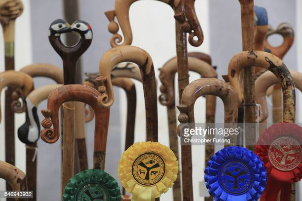 Shepherds crooks are displayed after judging during the Westmorland County Show on September 14 2017 in Milnthorpe England The Westmorland County...