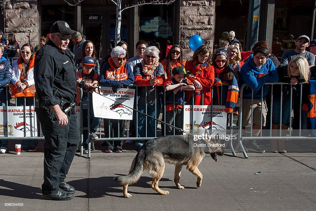 A sheriff department officer walks a department dog to smell for explosives as Denver Broncos fans line the street before Broncos players and personnel take part in a victory parade after the Broncos won Super Bowl 50 on 17th Street on February 9, 2016 in Denver, Colorado.