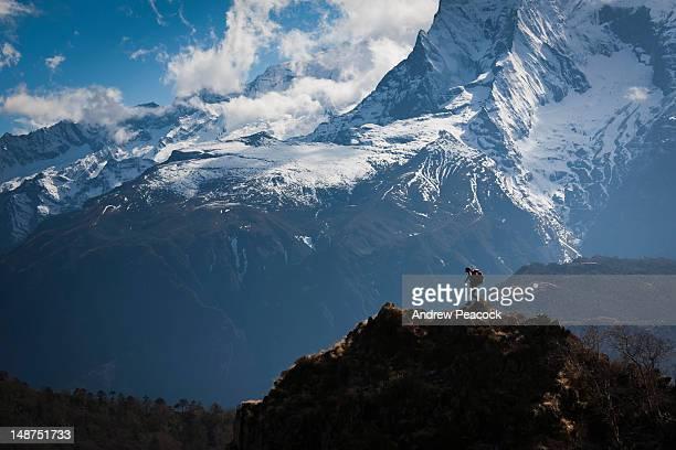 Sherpa walking on a Himalayan trail in Everest region.