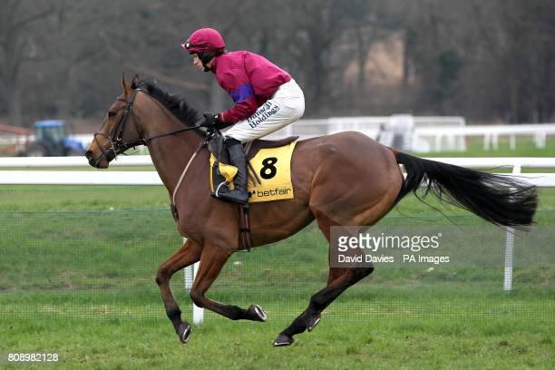 Sherwani Wolf ridden by Paddy Brennan going to post prior to the Betfair Supporting Greatwood Handicap Hurdle