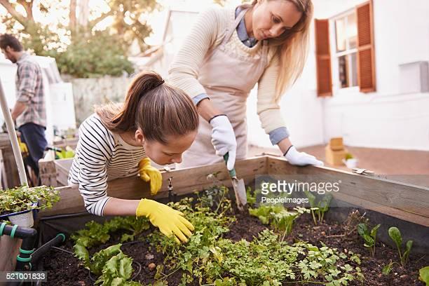 Sie ist ein leidenschaftlicher junger gardener