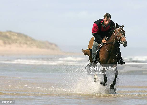 She's Archie ridden by trainer Darren Weir works in the ocean at Black Rock to overcome an injury October 24 2004 Melbourne Australia