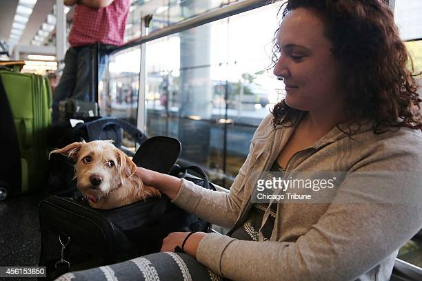 'She's so tired right now' said Kelsey Stephenson of Los Angeles about her dog Daisy as the two spent the morning of their shared birthday stranded...