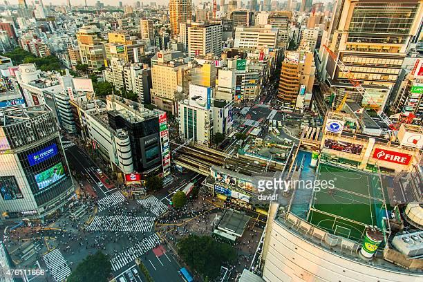 Shibuya-Kreuzung Luftbild Panorama