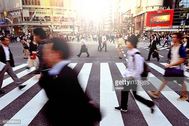 渋谷交差点(ゼブラ柄)の