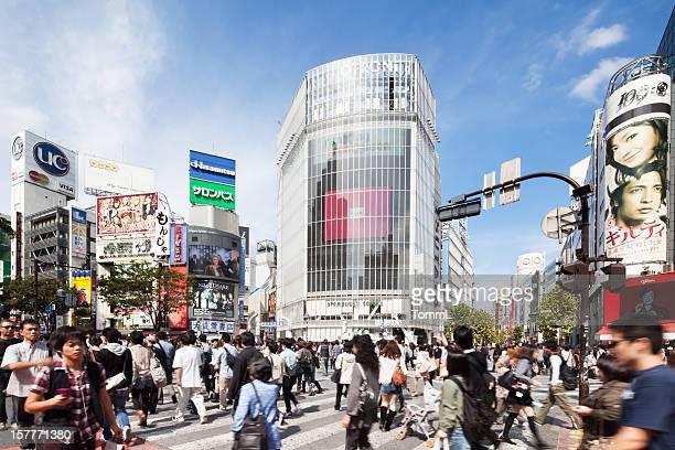 東京の渋谷交差点、日本-2010 年 10 月 3 日
