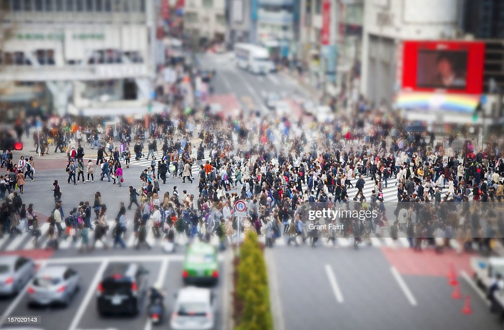 Shibuya pedestrian crossing at mid day : Stock Photo