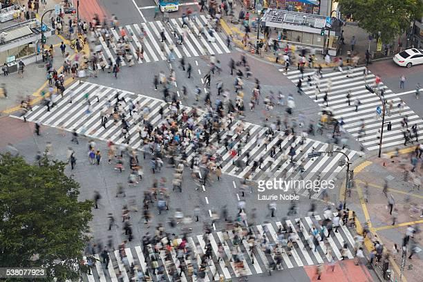 Shibuya scramble crossing, Shibuya, Tokyo, Japan