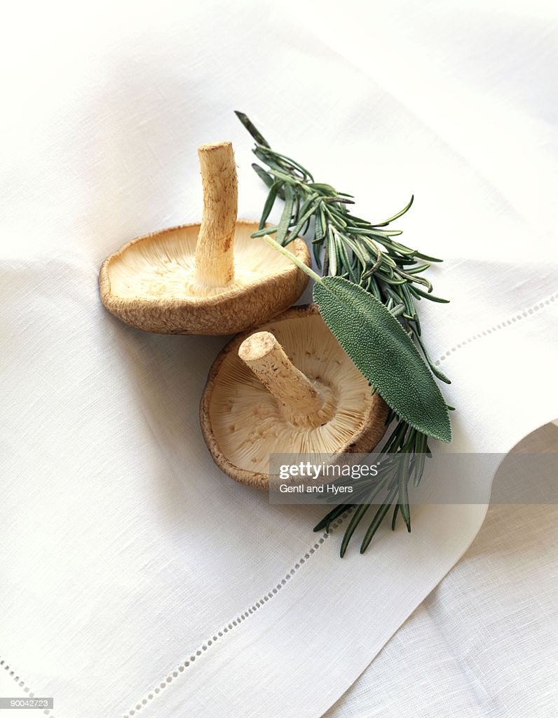 Shiitake mushrooms with herbs : Stock Photo