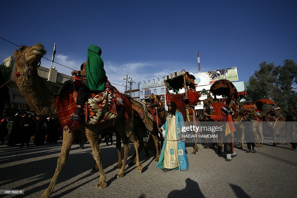 Shiite Muslim pilgrims lead their camels as they walk through Najaf coming from Basra on November 21 on their way to the shrine central city of...
