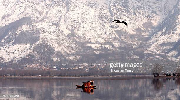 A shikara crosses the Dal Lake with the back drop of snow covered mountain on January 11 2014 in Srinagar India Srinagar recorded a low of minus 03...