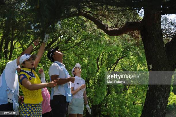 ShinAe Ahn of South Korea attempts to identify her ball that has become stuck in a tree on the 6th hole during the second round of the...
