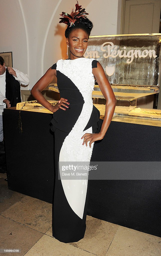 Shingai Shoniwa attends the Place For Peace dinner co-hosted by Ella Krasner and Forest Whitaker to support the Peace Earth Foundation in association with Star Diamond at Banqueting House on November 10, 2012 in London, England.