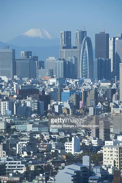 Shinjuku and Mt Fuji from Tokyo