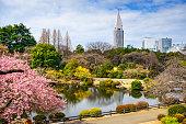 Tokyo, Japan at the Shinjuku District during spring season.