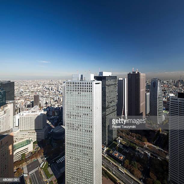 Shinjuku skyscrapers from Tokyo Metropolitan Bldg