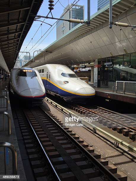 Shinkansen at Tokyo Station During the Day