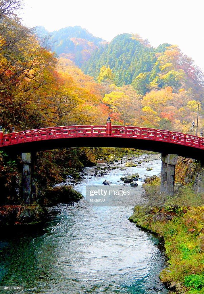 Shinkyo Bridge in Autumn