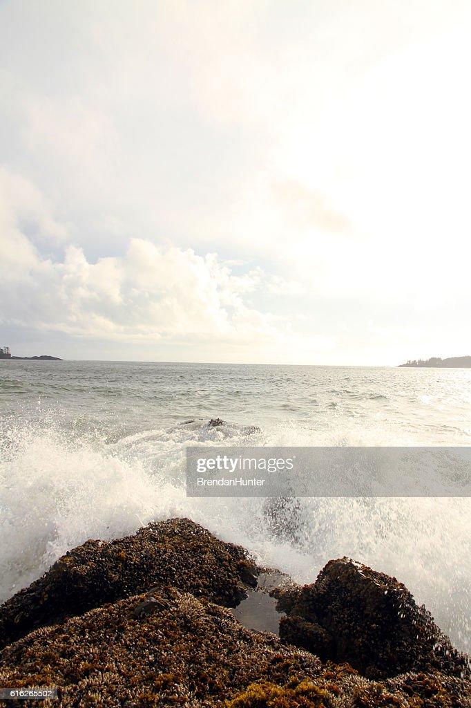 Shinning Pacific : Stock Photo