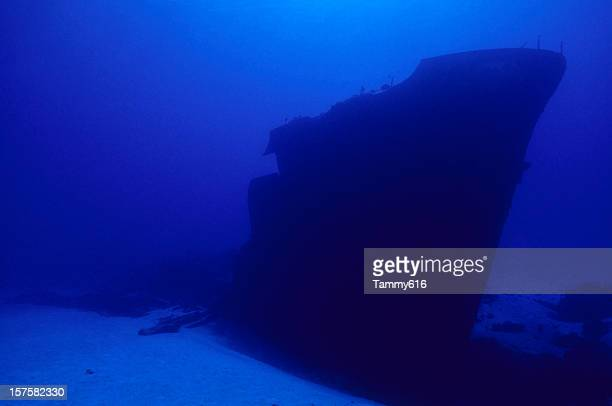 Shipwreck In the Abyss