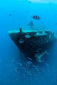Shipwrecked vessel near Ras Muhammed, Red Sea, Egypt.