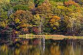 Shiragome pond at Nagano prefecture in autumn
