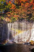 shiraito waterfall scenery in autumn, Fujinomiya , Shizuoka, Japan