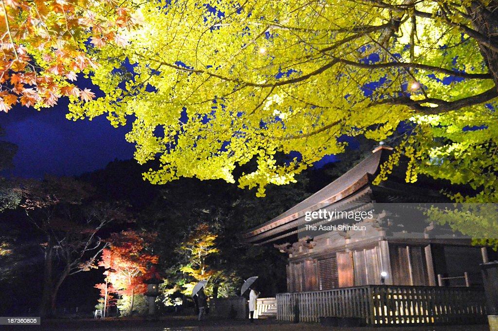 Shiramizu Amidado, registered as a national treasure, is illuminated during the test lighting on November 7, 2013 in Iwaki, Fukushima, Japan. The illumination, in hope of the restoration of Fukushima prefecture and Iwaki City, will be taken place from November 9 to 17.