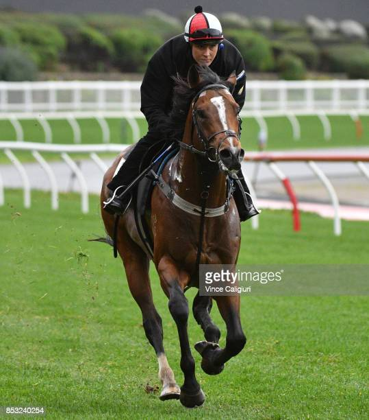 Shiree Knowles riding Russian Revolution during a trackwork Session at Moonee Valley Racecourse on September 25 2017 in Melbourne Australia