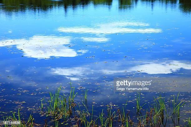 Shiretoko five lakes, Hokkaido