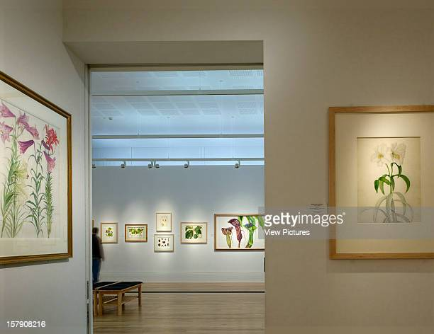 Shirley Sherwood Gallery Kew Gardens Walters And Cohen London 2008 Interior With Framed Artwork Walters And Cohen United Kingdom Architect