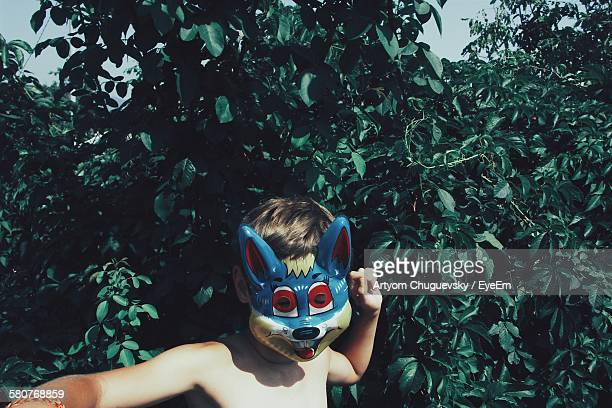 Shirtless Boy Wearing Fox Mask At Backyard