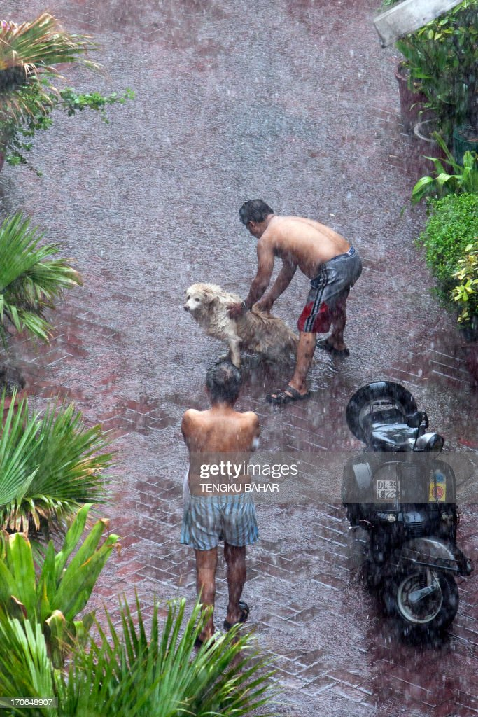 Shirtless local residents soak in the monsoon rains while a pet dog receives a washing down from its owner in New Delhi on June 16, 2013. Rain lashed the Indian capital June 15 as the weather department forecast the country will receive normal rains this year, raising prospects of a stronger performance by Asia's third-largest economy.