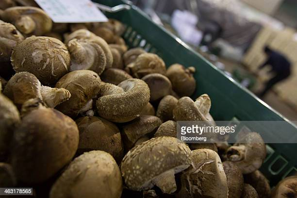 Shitake mushrooms are stacked in a boxes ahead of an auction at Garak Market operated by Seoul AgroFisheries Food Corp in Seoul South Korea on...