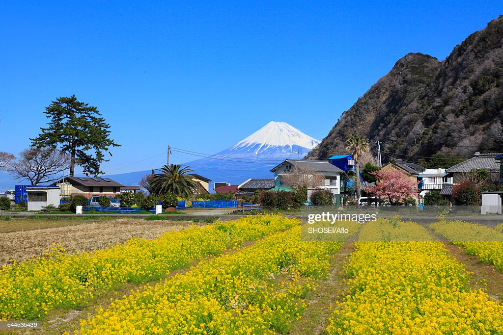 Shizuoka Japan  city photos : Shizuoka Prefecture Japan Stock Photo | Getty Images