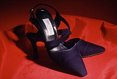 Shoes Designed By Fashion Designer Jimmy Choo