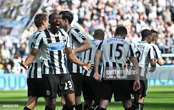 Shola Ameobi celebrates after scoring the opening goal during the Barclays Premier League match between Newcastle United and Swansea City at St...